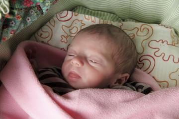 bimba neonato cucciola