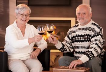 Portrait of senior couple clinking wine glasses