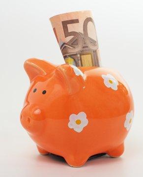Sparschwein mit fünfzig Euro Schein