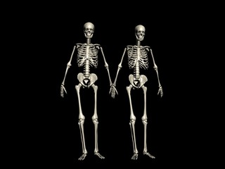 3D rendering of a couple of skeletons walking hand in hand