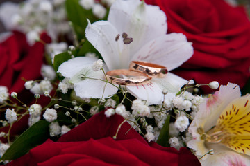 Gold wedding rings on colors