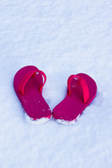Flip flops in the snow