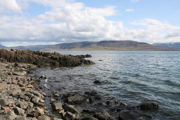 Fiord in Iceland - Hvalfjordur