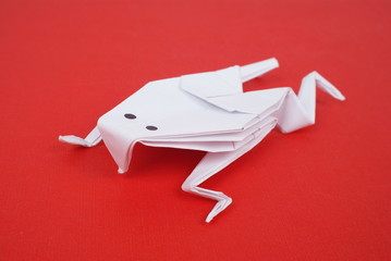 frog out of paper