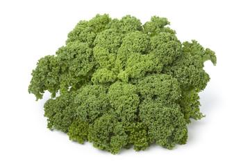 Fresh green kale at white background