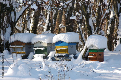 ruche sous la neige photo libre de droits sur la banque. Black Bedroom Furniture Sets. Home Design Ideas