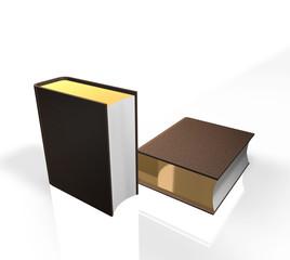 Book - notebook -  album