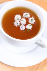 Cup of green tea with flowers of peppermint floating in it