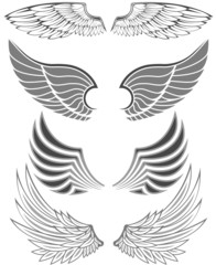 Wings in different forms and styles for emblems