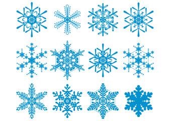 12 Vector Snowflakes Set