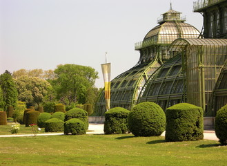Schloß Schönnbrunn - Palmenhaus -