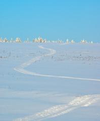 Fototapete - Snowmobile trail