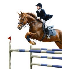 Equestrian jumper