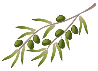 A branch of olive tree.