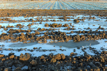 inverno paesaggio 1388