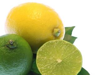 citrus Limette