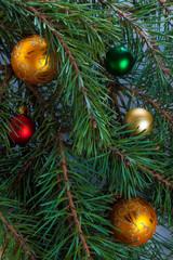 Christmas fir with decoration