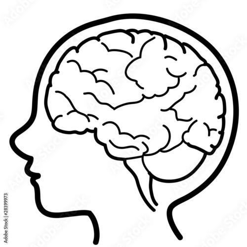 Line Drawing Brain : Quot icona di testa bambino con emisfero cerebrale visibile