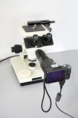 Electronic microscope