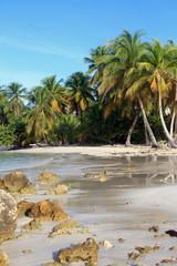 Accès barrière de corail, petites Antilles