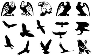 Sammlung Adler