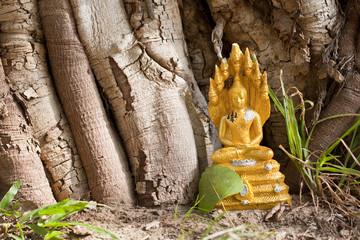 golden budha image under the tree