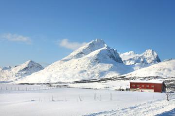 Farm under a mountain