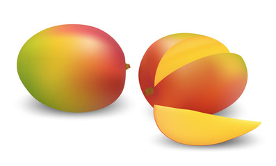 Mango vector illustration.