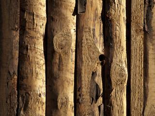 Textur_Holz_Tür