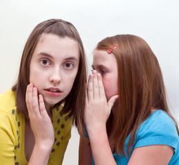 Девочки секретничают