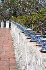 oriental pot plants