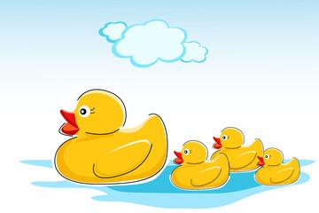 ducks in water