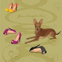 Vector illustration of a nice dog with shoes