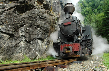 Functional steam locomotive. Vaser valley, Maramures, Romania