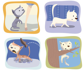 Printed kitchen splashbacks Cats gatos