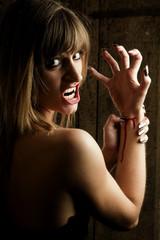 Vampirblut 3