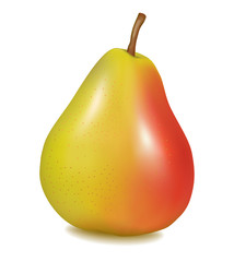 Photo-realistic vector illustration of the ripe pear