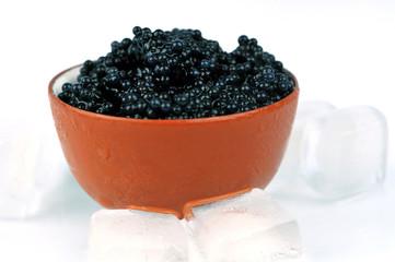 Caviar glacé