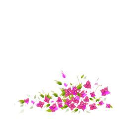 Flower, vector background