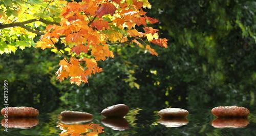 Steine im teich stockfotos und lizenzfreie bilder auf for Steine teich
