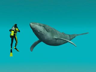 Taucher mit Wal