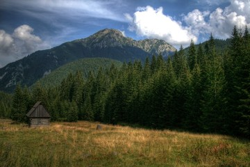 Fototapeta Dolina Chochołowska,Tatry