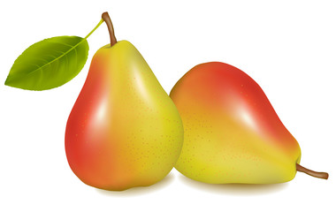Two ripe yellow pears with green leaf. Vector illustration