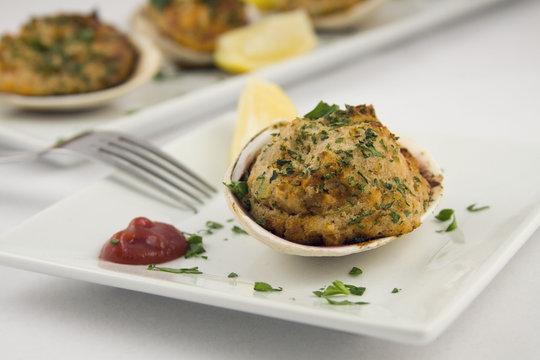 stuffed clams appetizer
