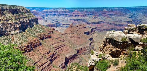 Majestic Grand Canyon View
