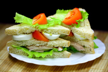 Two tasty sanwiches on the white plate