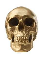 Golden skull on white background