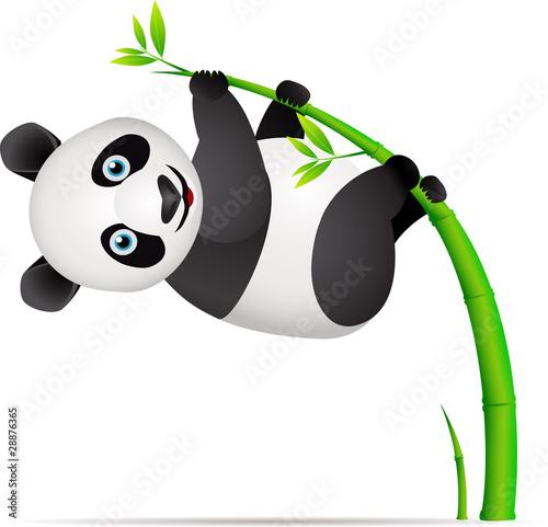 панда неожиданно ожил