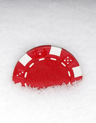 red chip in snow