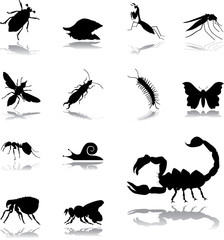 Set icons - 125. Insects